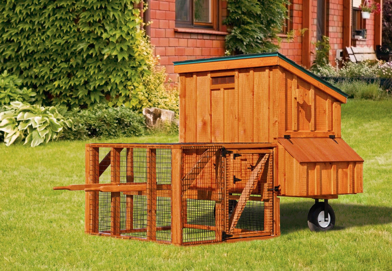 Amish-crafted chicken coops and dog kennels