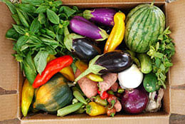Items available through Ort Farms CSA program in Long Valley NJ