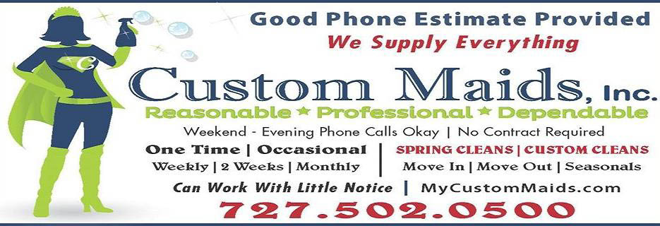 professional maid save on cleaning service spring clean custom clean