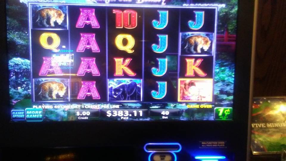 New and exciting video gaming poker at Darla's Cafe in Palos Hills.