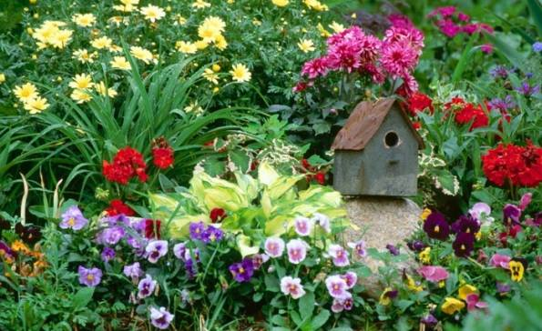 Flowering annuals and bird houses for the garden near Carlisle