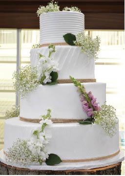 wedding cakes professional wedding cakes wedding cake tastings affordable wedding cake custom wedding cake