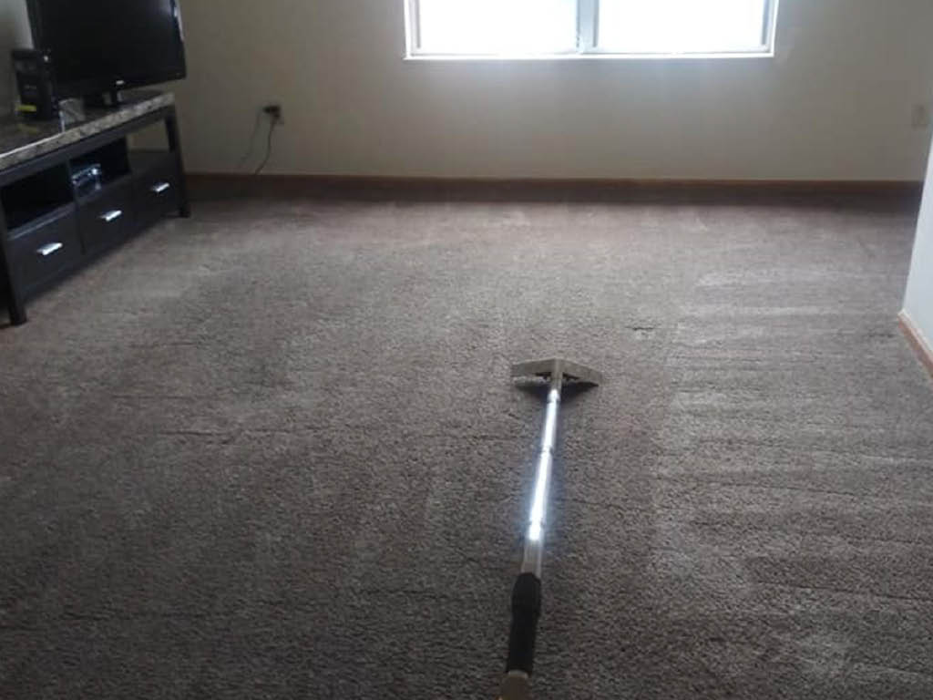 Dirt Busters carpet cleaning
