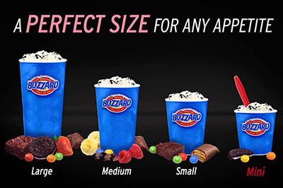 ice cream blizzard coupons rochester ny