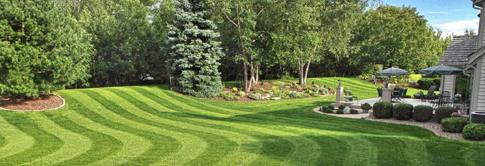 Have a beautiful lawn by Earth Concepts Lawn Maintenance in Livonia, MI