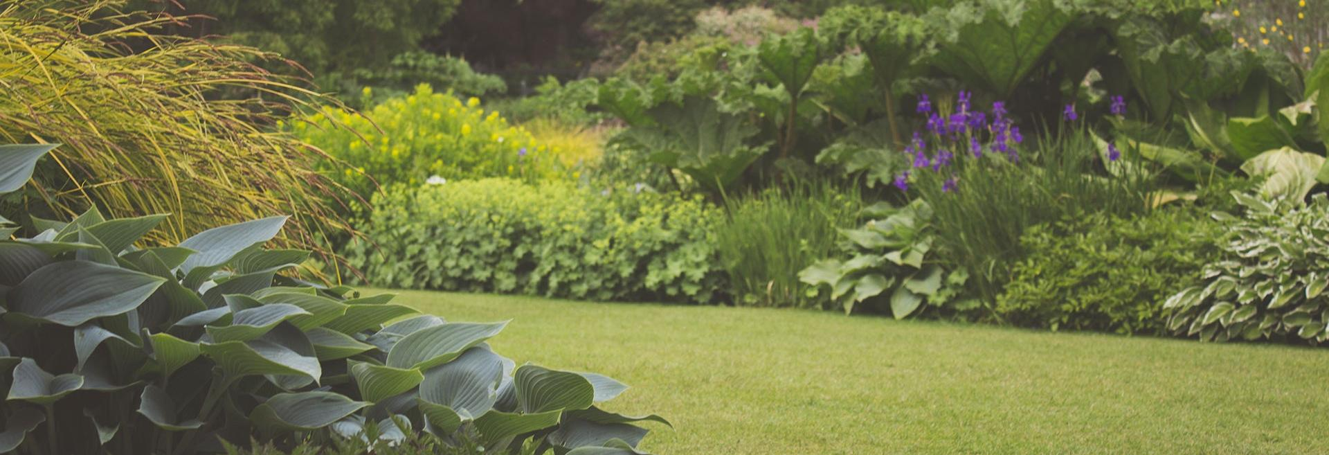 eastern grounds landscaping, lawn & landscape specialists