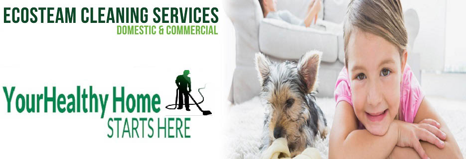 Ecosteam Cleaning in N. Providence, RI banner
