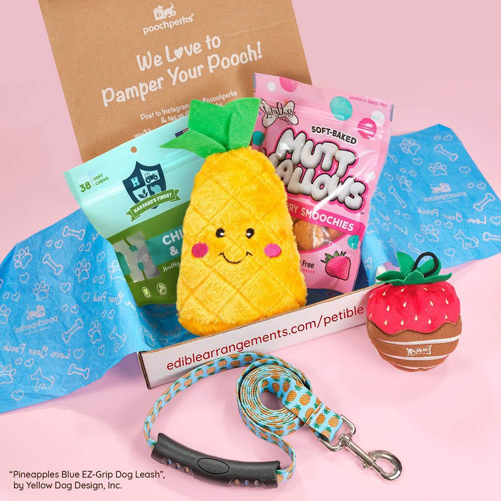 edible arrangements kenosha milwaukee WI petible treat package
