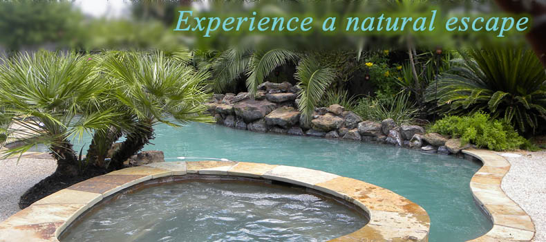 Nature's landscaping surrounds your free-form pool