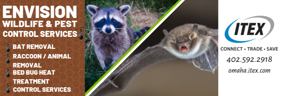 Savings, wildlife management, bed bugs, insulation, pest control, bugs, bats, roaches, coupons
