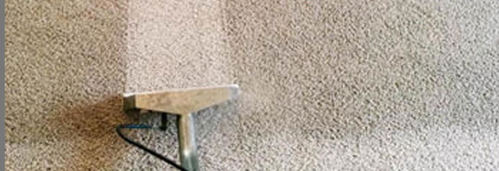 Executive Carpet Cleaning banner Grand Island, NY