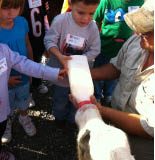 Kids feeding a baby cow and bottle of milk at petting zoo at Fawn's Pumpkin Farm in Frankfort..