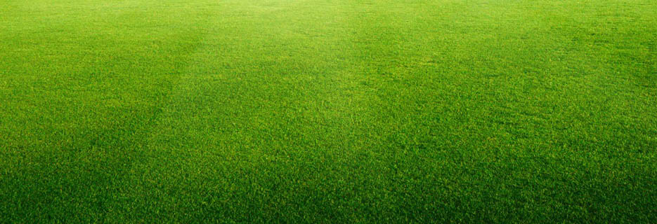 Feed Ur Lawn Garfield New Jersey 07026