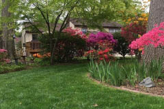 landscaping plants New Jersey lawn care services Bergen County NJ lawn weed and feed Passaic County retaining wall Bergen County landscaping rocks New Jersey grass fertilizer Bergen County landscaper near me Garfield NJ