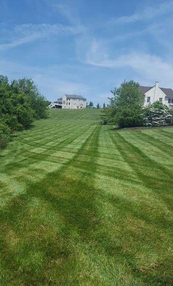 Final Cut Landscape and Tree Care greater baltimore md area