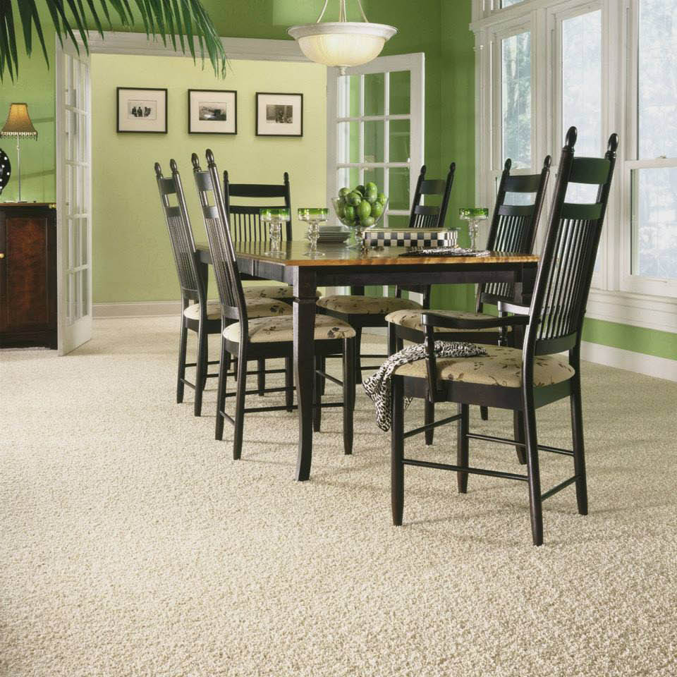 Plush carpeting service discounts near Palolo