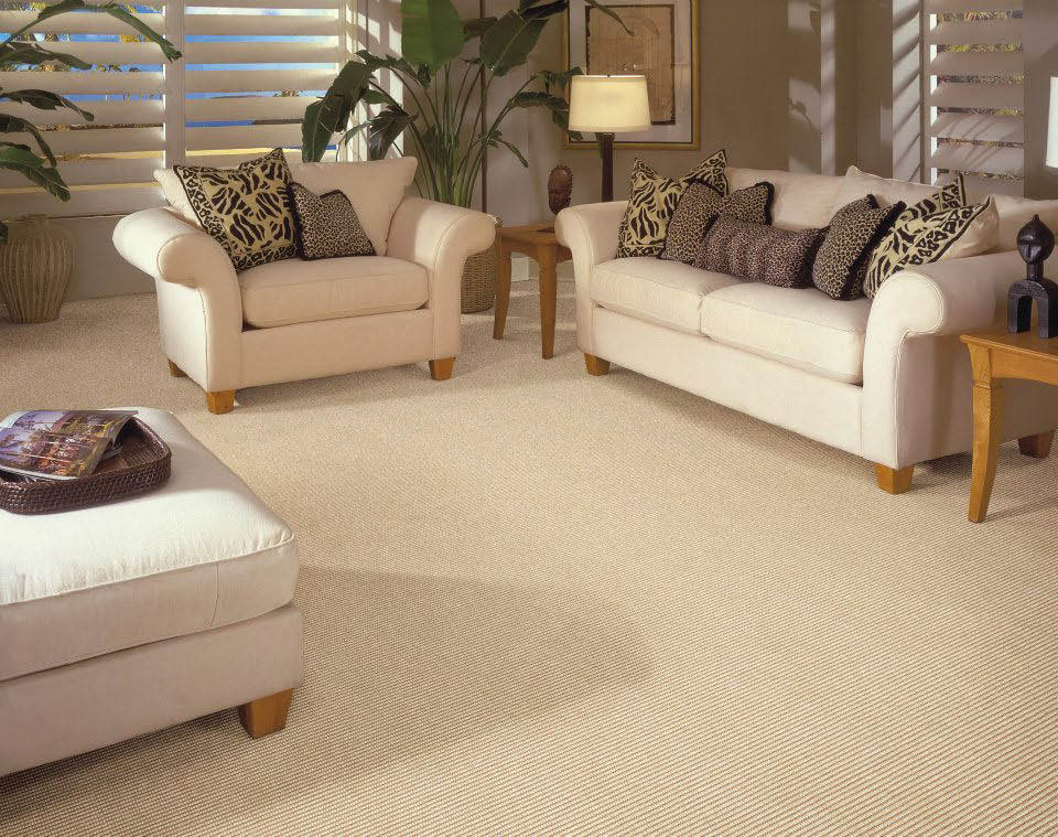 Rugged carpeting for foyer rooms at cheap prices in Honolulu