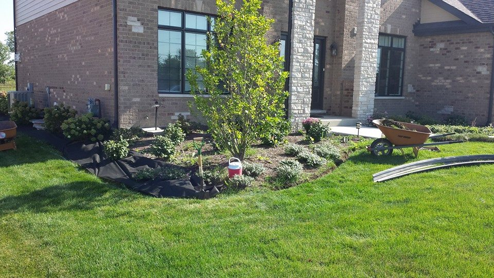Flower and tree bed installation by Tundra landscape