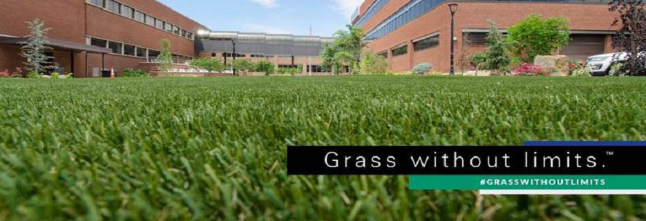 Beautifully manicured grass lawn photo banner