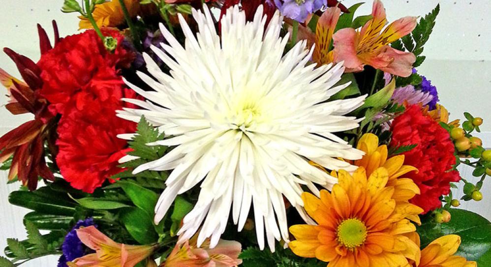 Fresh cut flowers Floral arrangements Weddings     Houseplants Funeral arrangements Cemetery flowers