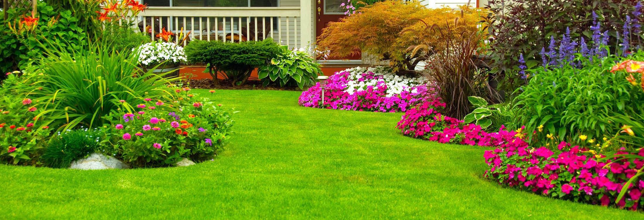 Galvans Lawn & Landscape Banner Image