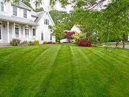 Galvans Lawn & Landscape Yard Picture