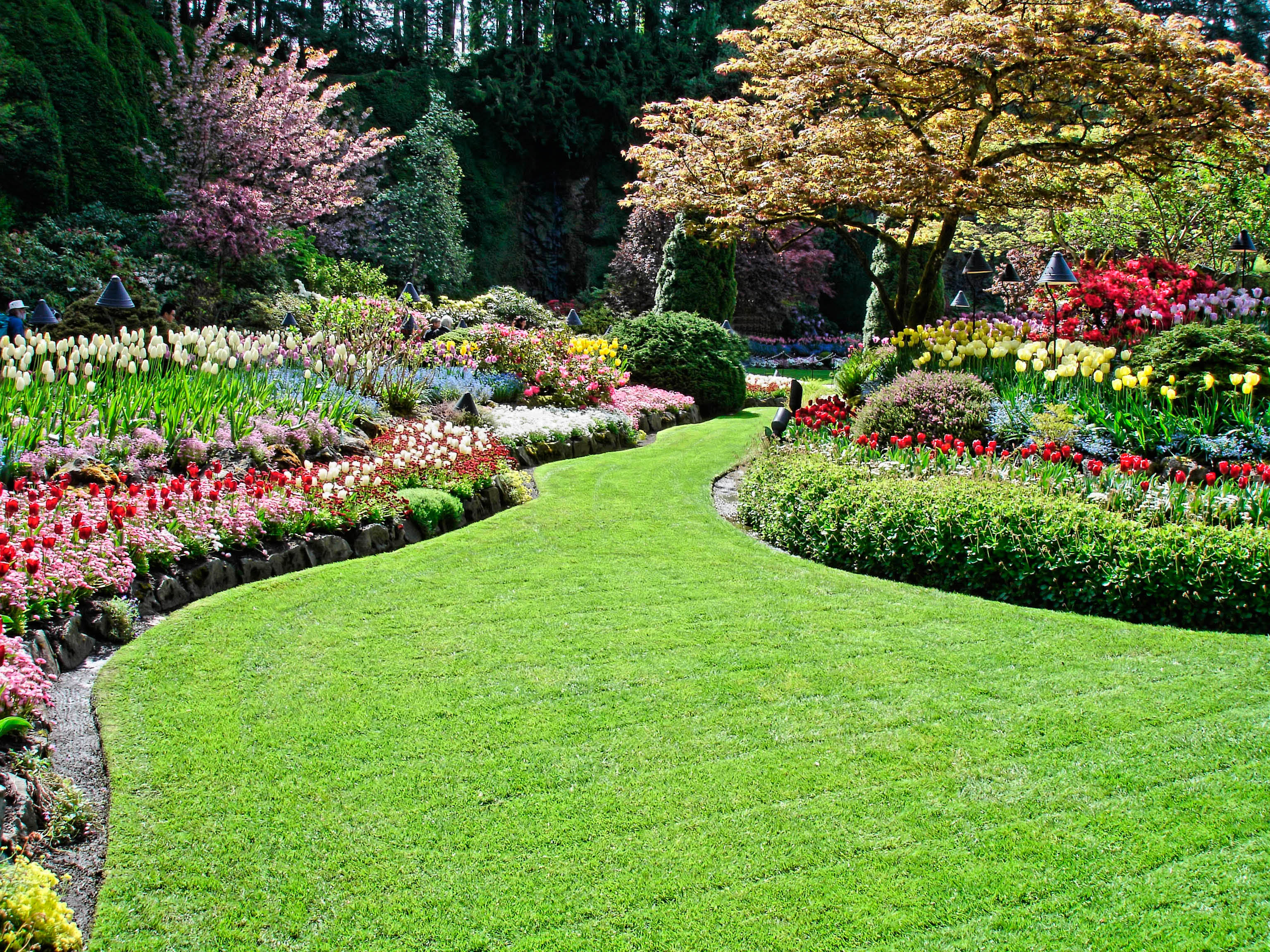 Beautiful Landscaping Created & Installed by The Grounds Guys Of Overland Park.