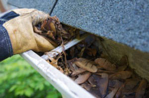 Gutter Cleaning in Minneapolis and St. Paul