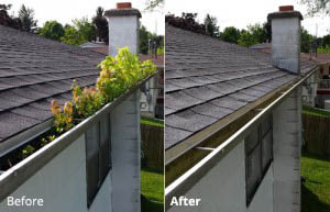 Gutter Cleaning. Call 1-847-322-6868 for Gutter Installation and Repair!