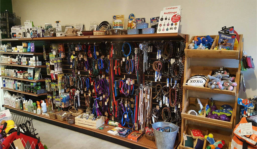 dog collars, pet supplies, leashes
