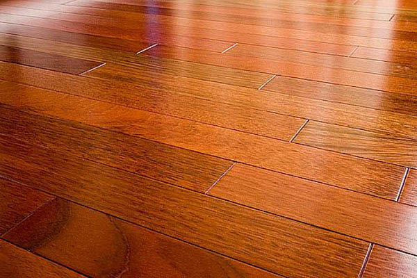 Stanley steemer hardwood floor cleaning local coupons for Printable flooring
