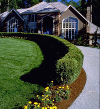 Harford Tree Experts landscaping services in harford and baltimore county.