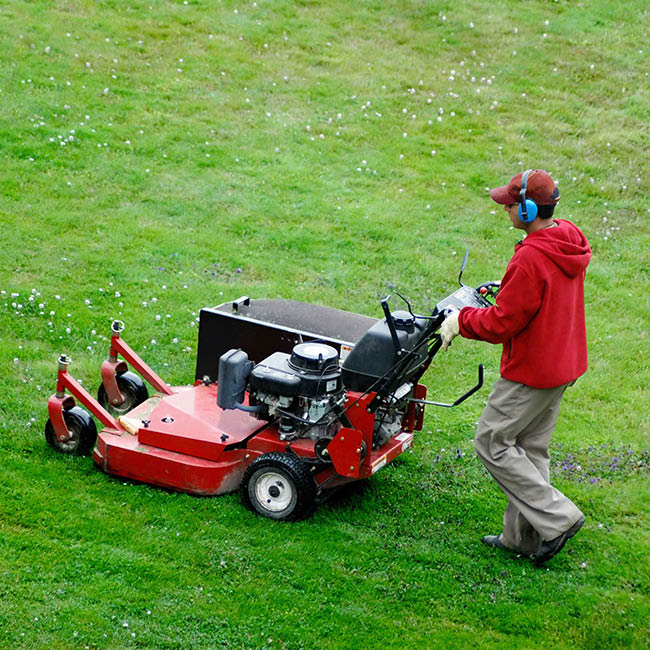 lawn care, mowing, landscaping, aeration, overseeding, leaf removal, gutter cleaning, licensed, bonded; serving northern va and surrounding