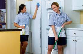 weekly home cleaning service molly maids Rochester ny