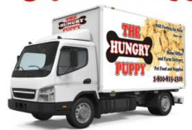 delivery, pet store, pet care