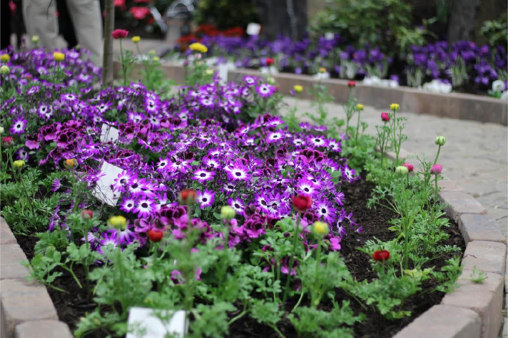 flower, garden show, trains, displays, landscaping, hardscaping, kids event, live animals, art, accessories; allentown, pa
