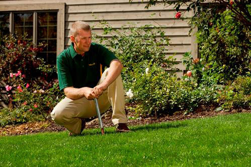 lawn care, mowing, weed control, crabgrass, fertilization, disease control, aeration, insect control; serving fairfax, va and surrounding area