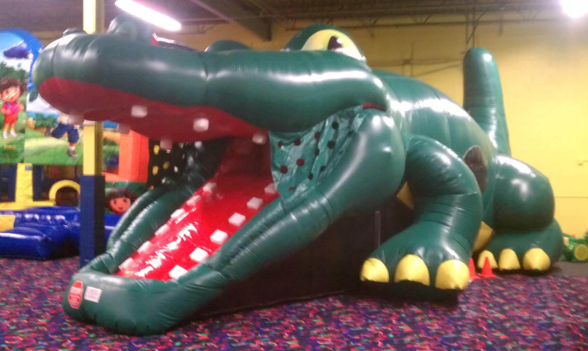 Alligator jump and play in Chicago Ridge, IL.