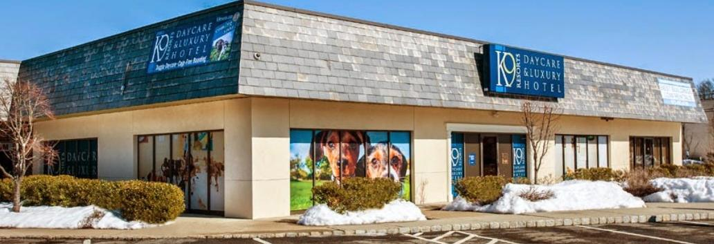 K9 Resorts in New Jersey - NJ Doggy Daycare