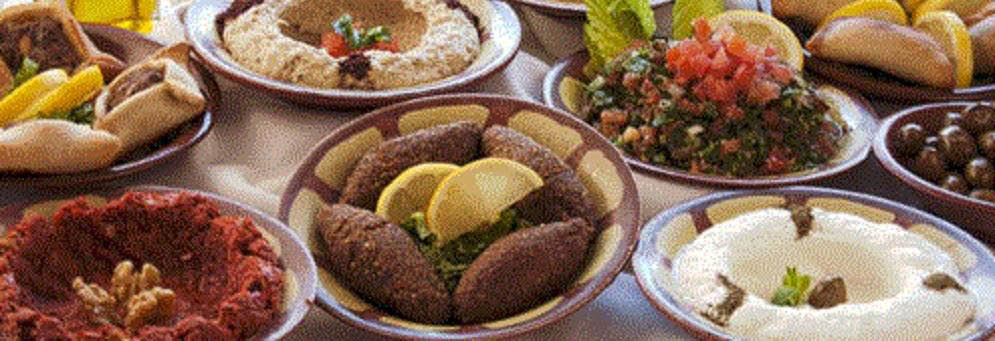 Variety of Mediterranean food at Shish Palace in Auburn HIlls, MI
