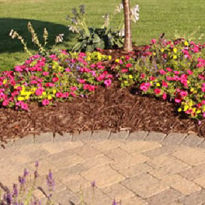 Landscaping and lawn care in Wahiawa