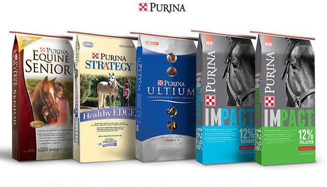 Healthy Purina line of quality horse feeds at Knisely's close to Caprivi, PA