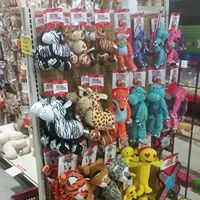 Pet toys for your 'good boy' and 'good girl' pets