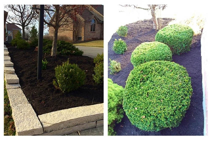landscaping design services victors landscaping services llc plainfield NJ