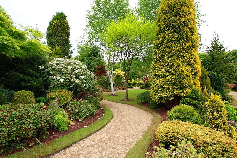 Shrubbery, trees and green plants create a beautiful garden landscape