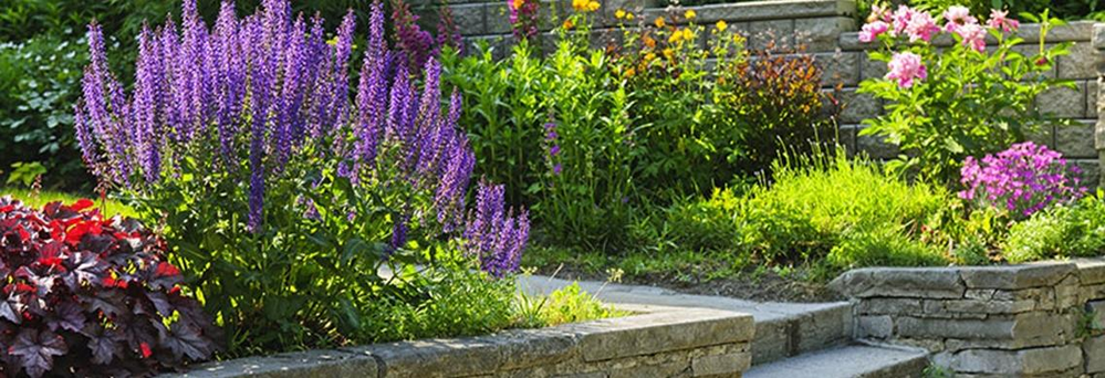 Laurie's Landscape Services creates beautiful hardscape and landscape designs banner