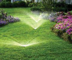 Lawn Pro - J.W. Herman Lawn & Landscape Services, LLC, sprinkler, lawn