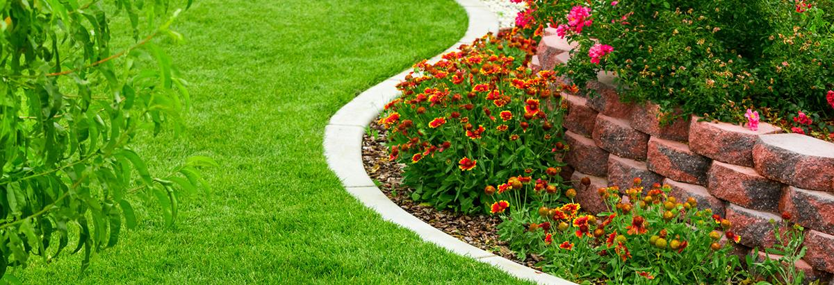 Chicago landscaping TNI Lawn Care banner