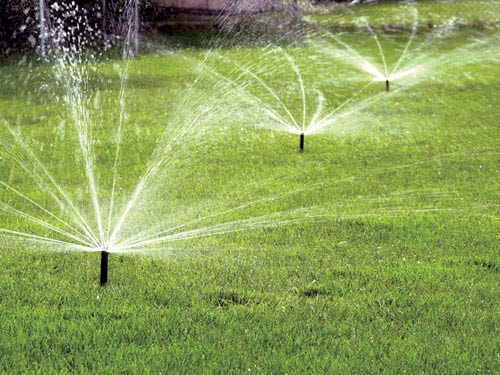 Irrigation Doctor installs quality lawn sprinkler systems