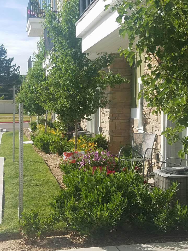 legacy-house-patio-homes
